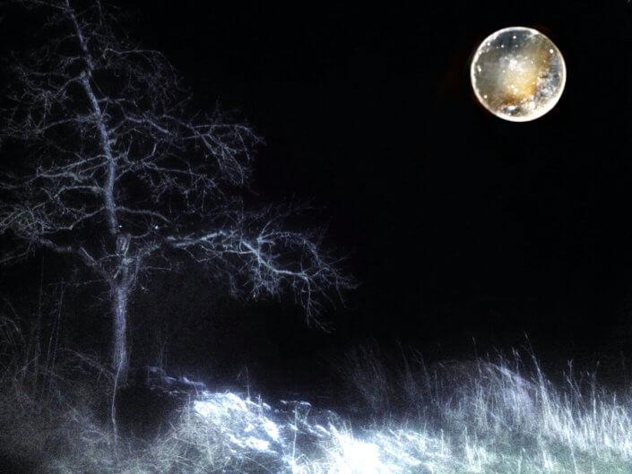 Eckhard Ischebeck - Strange Moon